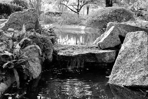 Stream, Waterfall, Park, Wilderness, Houston Texas