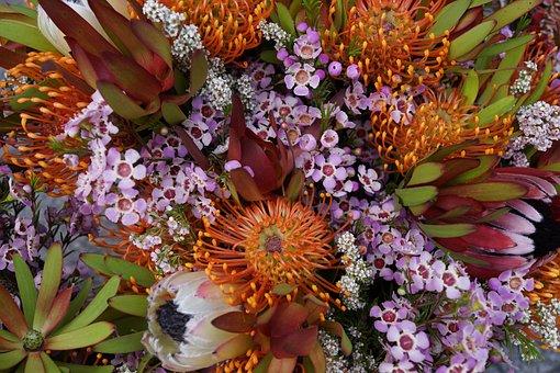 Natives, Floral Bouquet, Blossom, Flora, Decoration
