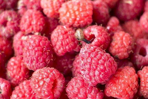 Raspberry, Background, Fresh, Berries, Fruit, Food