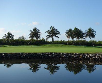 Grand Cayman Islands, Vacation, Sun, Water, Green, Blue