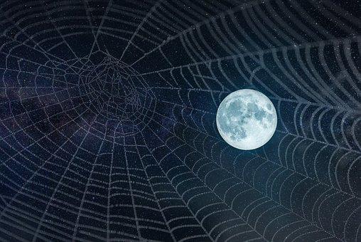 Moon, Full, Web, Stars, Night, Twilight, Magic