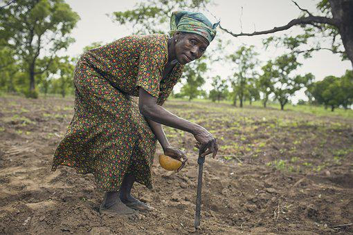 Farmer, Africa, Woman, A Woman On Farm, Planting