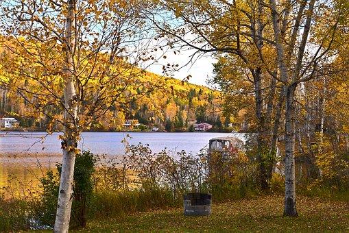 Fall, Autumn Landscape, Nature, Autumn Leaves, Colors
