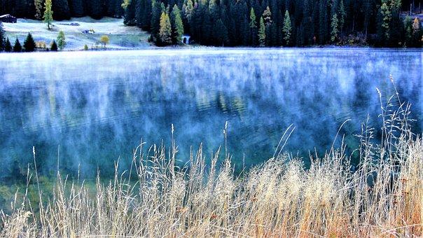 Lake, Autumn, Morning, Haze, Beach, Davos, Grass