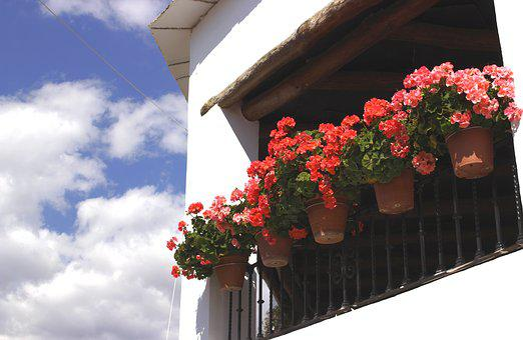Pots, Balcony, Alpujarras, Capileira, Andalusia