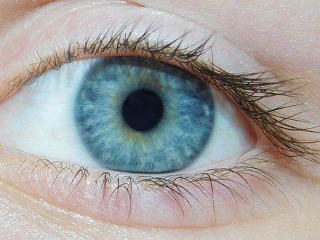 Blue, Eye, Blue Eyes, Face, Female, Woman, Girl, Young