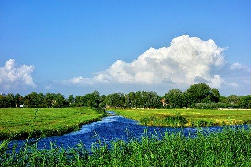 Water, Waterway, Meadow, Field, Polder, Skyline, Trees