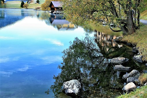 Lake, The Water, Reflection, Rock, Beach, Dawn, Tree