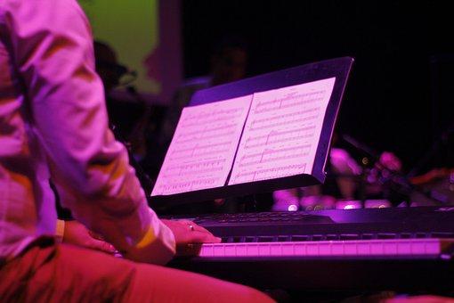 Music, Concert, Festival, Musical, Musician, Sound