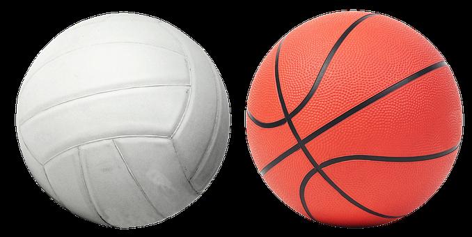 Volleyball, Basketball, Ball, Game, Basket, Net, Sports