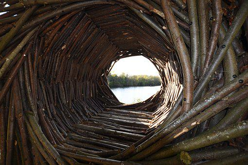 Natural Structure, Wooden Spiral, Spiral, Wood, Natural