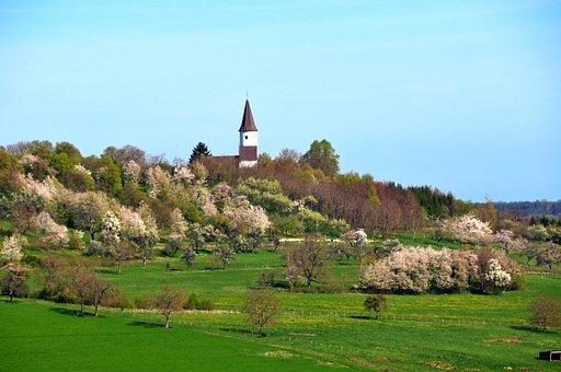 Chapel Of Kirchberg, Berg, Alsace, Orchard