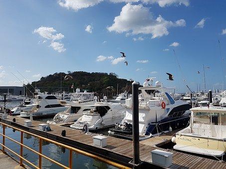 Bay, Barca, Boats, Sea, Sun, Costa, Sailboats, Beach