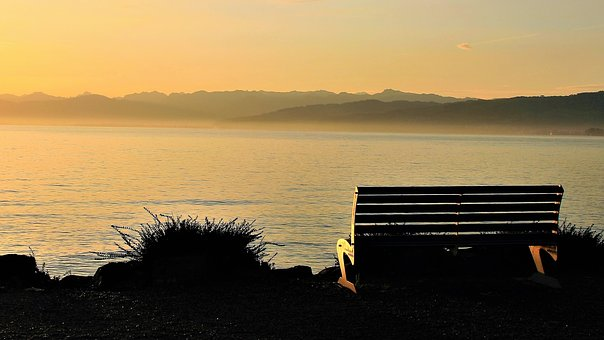 Bench, Autumn, Dawn, In The Morning, Lake, Morning Mist