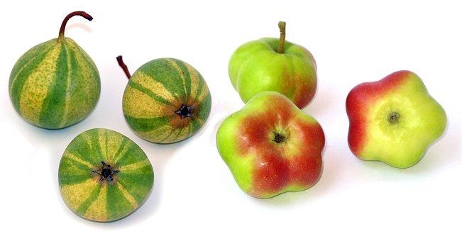 Apple, Api Etoilée, Pear, Sternapi, Schweizerhose