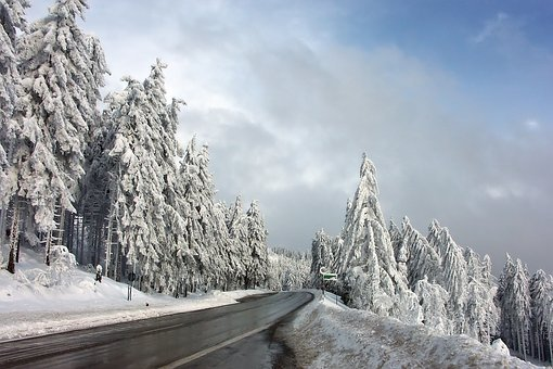 Winter, Road, Snow, Forest, Cold, Snowy, Snow Landscape