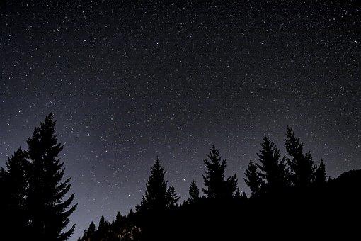 Night, Star, Starry Sky, Night Sky, Sky, Good Night