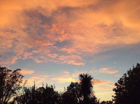 Sunrise, Silhouette, Nature, Landscape, Morning