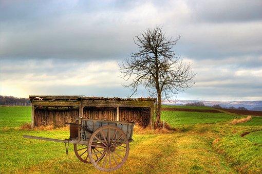 Cart, Wood Car, Scale, Meadow, Clouds, Sky, Towbar
