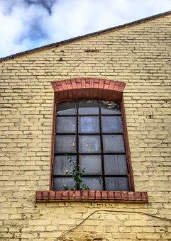 Window, Industrial Building, Industrial Hall, Building
