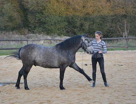 Horse Girl, Complicity, Sport Riding