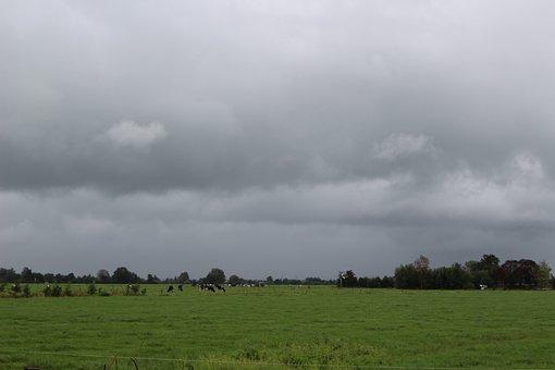 Pasture, Netherlands, Landscape, Dark, Dutch Landscape