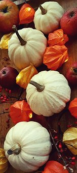 Pumpkin, Physalis, Apple, Barberry, Decoration, Autumn