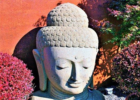 Buddha, Zen, Autumn, Garden, Sunny, Light, Flowering