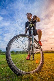 Bike, Boy, Child, Fun, Cycling, Sport, Wheel, Wheels