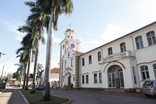 Church, Catholic, Palm Tree