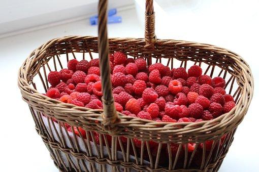 Raspberry, Berry, Harvest, Berries Of A Raspberry