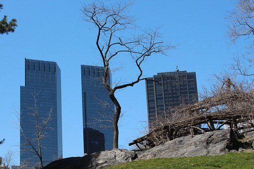 Central Park, State, Usa, Manhattan, New, Park, Statue