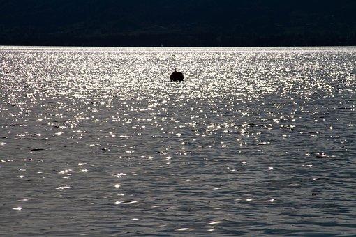 Lake, Sparkle, Back Light, Water, Nature, Shine