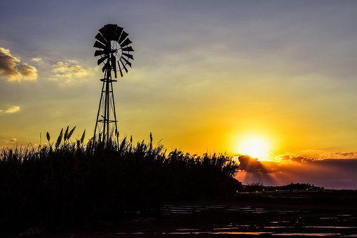 Windmill, Sunset, Reeds, Agriculture, Silhouettes