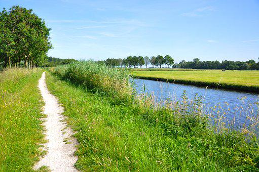 Water, Path, Track, Dirt Track, Waterway, Canal, Field