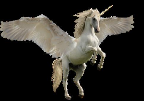 Unicorn, Fantasy, Horse, Mythology, Fairy-tale, Animal