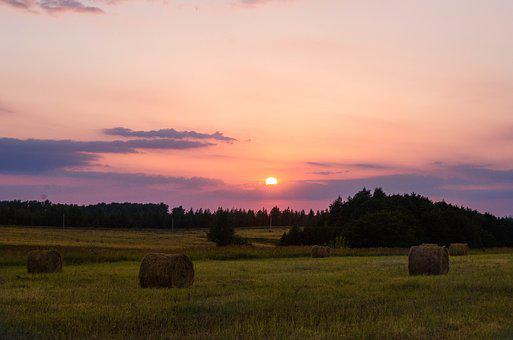 August, Stack, Summer, Evening, Straw, Hay, Field