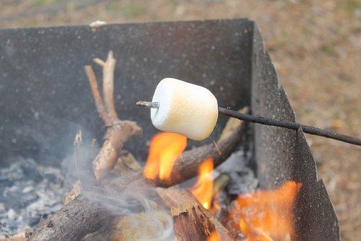 Zephyr, Koster, Firewood, Marshmallows, Fried, Fire