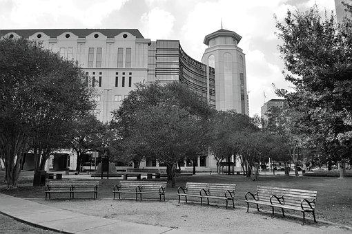 Herman Park, Houston Texas, Benches, Four, 4, Trees