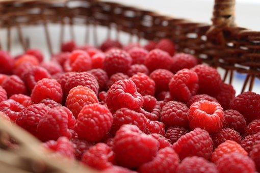 Raspberry, Berry, Berries Of A Raspberry, Summer