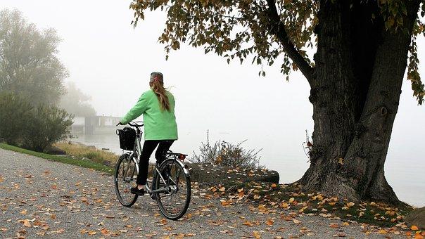 Foliage, Beach, Lake, Bike, Haze, Bodensee, Relax