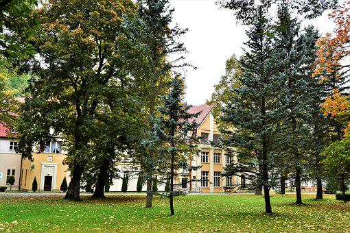 Autumn, Park, Landmark, Architecture, Nature, Tree