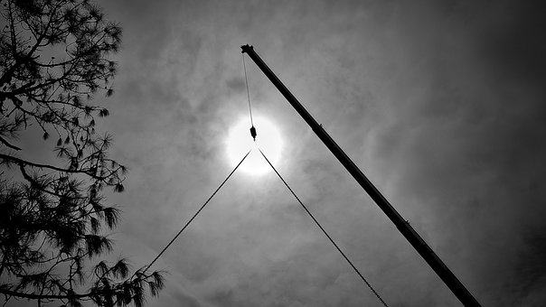 Crane, Arm, Chain, Hook, Sun, Tree, Sky