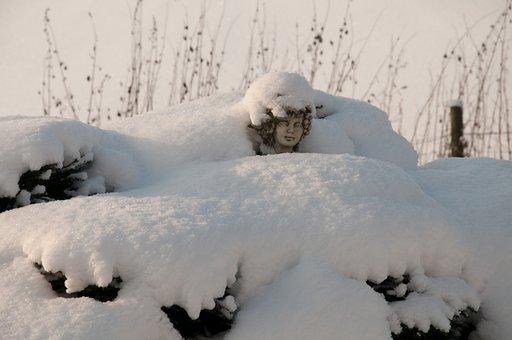 Winter, Snow, Wintry, Cold, Eiskristalle, White, Light