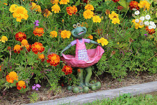 Frog, Flowers, Greenery, Summer, Flower, Leaf