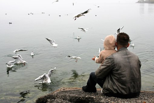 The Father Of The Child, Love, Lake, Haze, The Seagulls