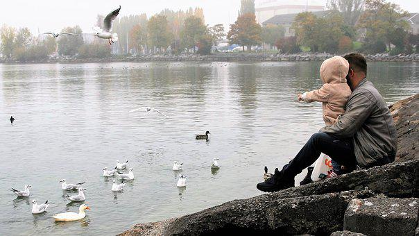 Father, Toddler, Rocks, The Hand, Lake, The Seagulls