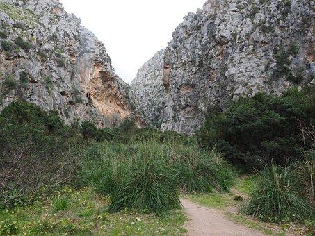 Torrent Pareis, Gorge, Riverbed, Dehydrated, Sa Calobra