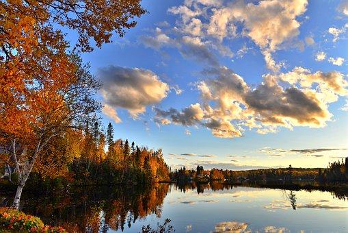 Fall, Autumn Landscape, Autumn Leaves, Trees, Foliage