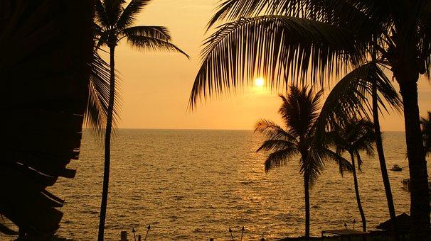Beach, Nature, Sunset, Vacation, Palm, Palm Trees, Sun